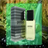Puig - QUORUM SILVER- 100 ml EDT Spray- Men