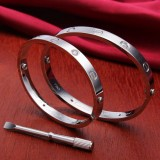 Titanium Steel Rhinestone Lover Bangle