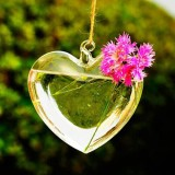 Heart Shaped Hanging Glass Vase